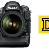 Nikon D4 High ISO Sample Images