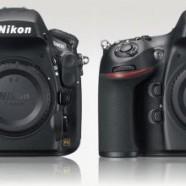 Why I chose the Nikon D800 over the D800E