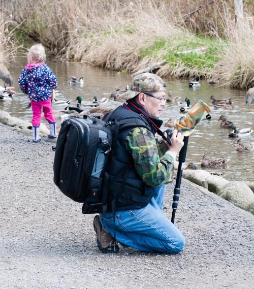 George C. Reifel Migratory Bird Sanctuary: camo dude