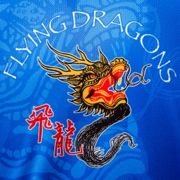 2012-06-17-Dragon Boat Festival 2012 : Team Logo