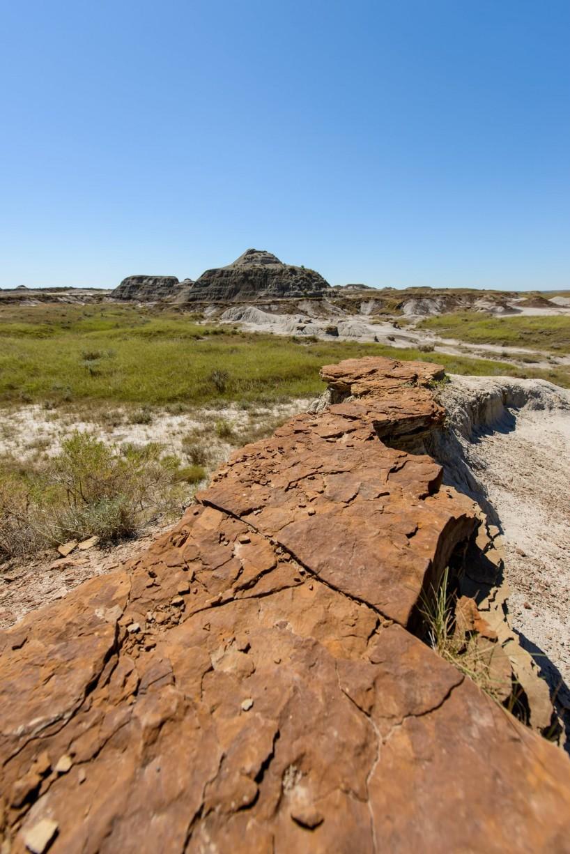 Alberta Visit Aug 2012 : Dinosaur Provincial Park
