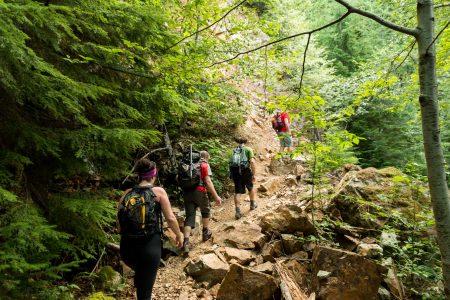 Lions Binkert Trail Hike Vancouver - 2012-08-18 : getting steeper