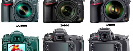 Nikon D7000 vs D600 vs D800 : A Quick Comparison
