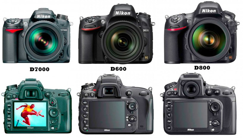 Nikon D7000, D600, D800 Visual Comparison : Front and Rear View