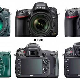 Nikon D7000, D600, D800 Visual Comparison : Front and Rear View