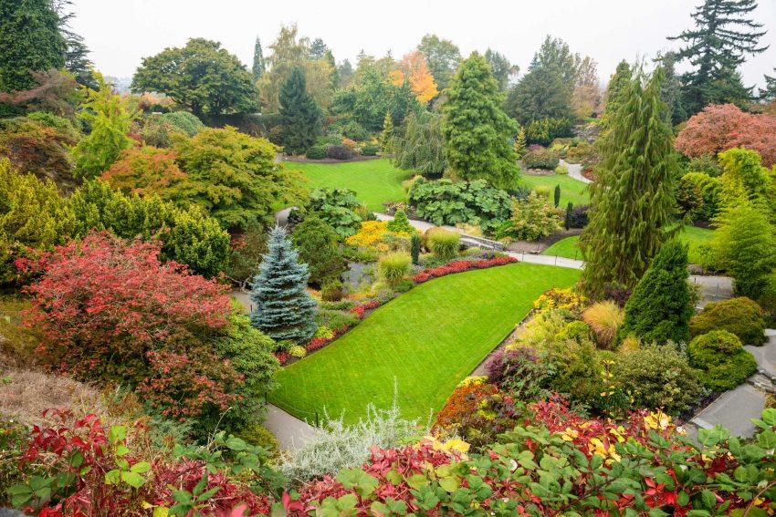 Queen Elizabeth Park, Vancouver, BC : 2012-10-11 : Fall Colours