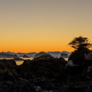 Ucluelet Vacation