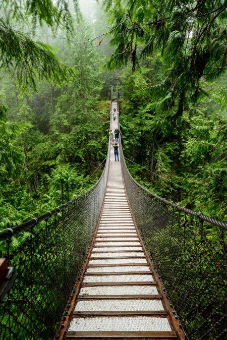 Lynn Valley Hike : Suspension Bridge and Twin Falls 2012-12-29 : Suspension Bridge