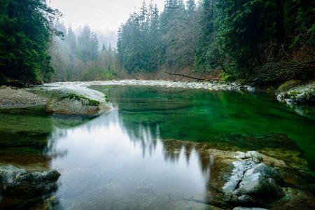 Lynn Valley Hike : Suspension Bridge and Twin Falls 2012-12-29 : Green pool below Twin Falls