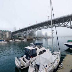 False Creek Fog - 2013-02-03 : Granville Street Bridge