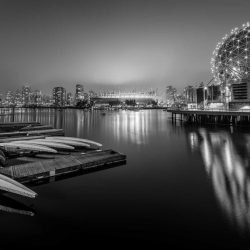False Creek Fog - 2013-02-03 : Dragon Boat Black & White
