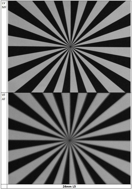 Nikon D800 Autofocus Test : Nikkor 24-70mm f/2.8 : 24mm L5 Detail