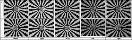 Nikon D800 Autofocus Test : Nikkor 24-70mmf/2.8 : 70mm Results