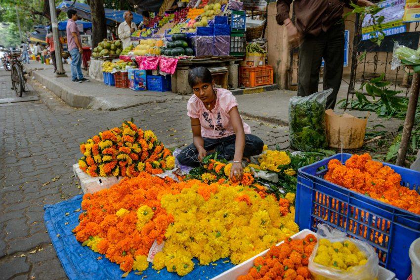 2012 Oct : Mumbai India Visit : Flower