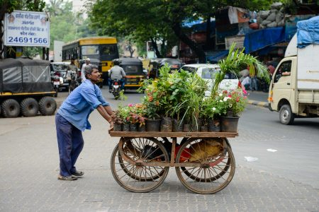 2012 Oct : Mumbai India Visit : Flower Cart