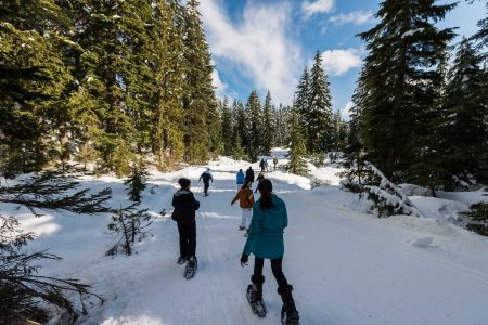 Cypress Mountain Snowshoeing 2014-03-20: The Hiking Team