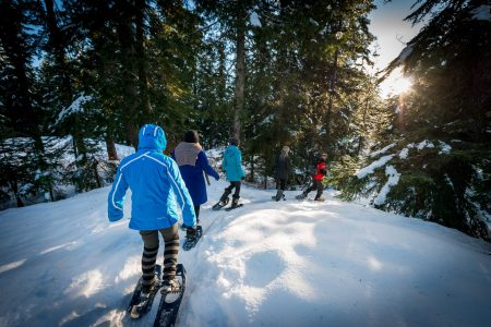 Cypress Mountain Snowshoeing 2014-03-20: Beautiful Day for a Walk
