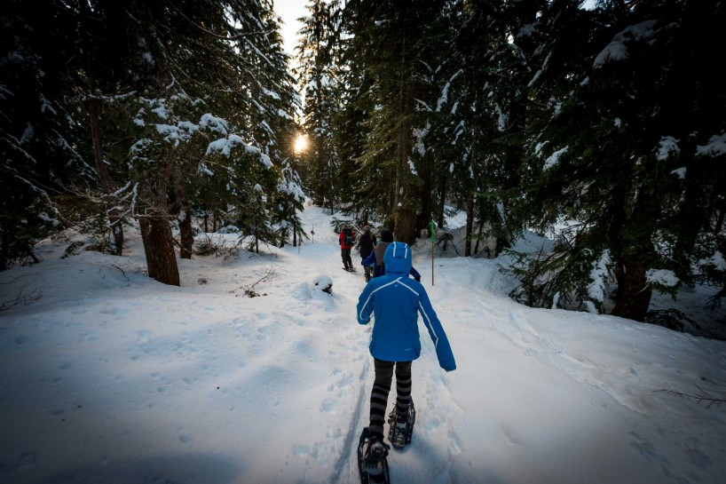 Cypress Mountain Snowshoeing 2014-03-20: Dusk in the Woods 2