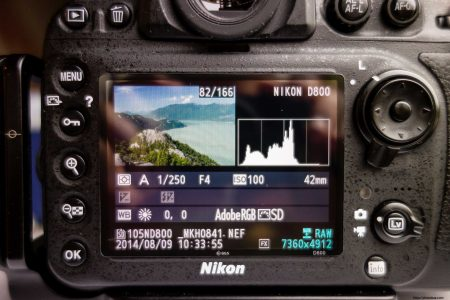 Expert Shield vs GGS Screen Protector : GGS on Nikon D800 Back