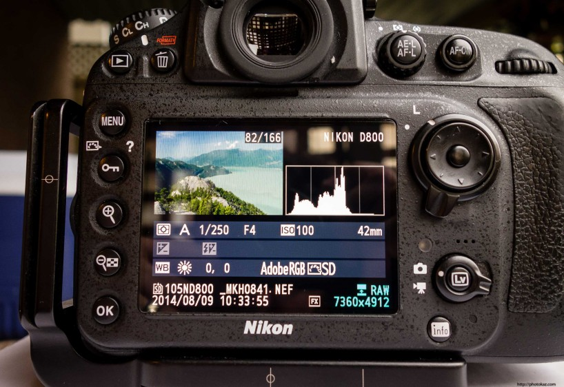 Expert Shield vs GGS Screen Protector : Expert Shield on D800 Back