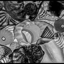 Dale Chihuly Glass Art : 2013-01-05 : Shapes B&W