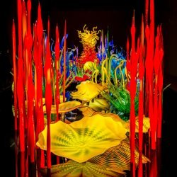 Dale Chihuly Glass Art : 2013-01-05 : Display 5