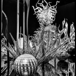 Dale Chihuly Glass Art : 2013-01-05 : Display black and white