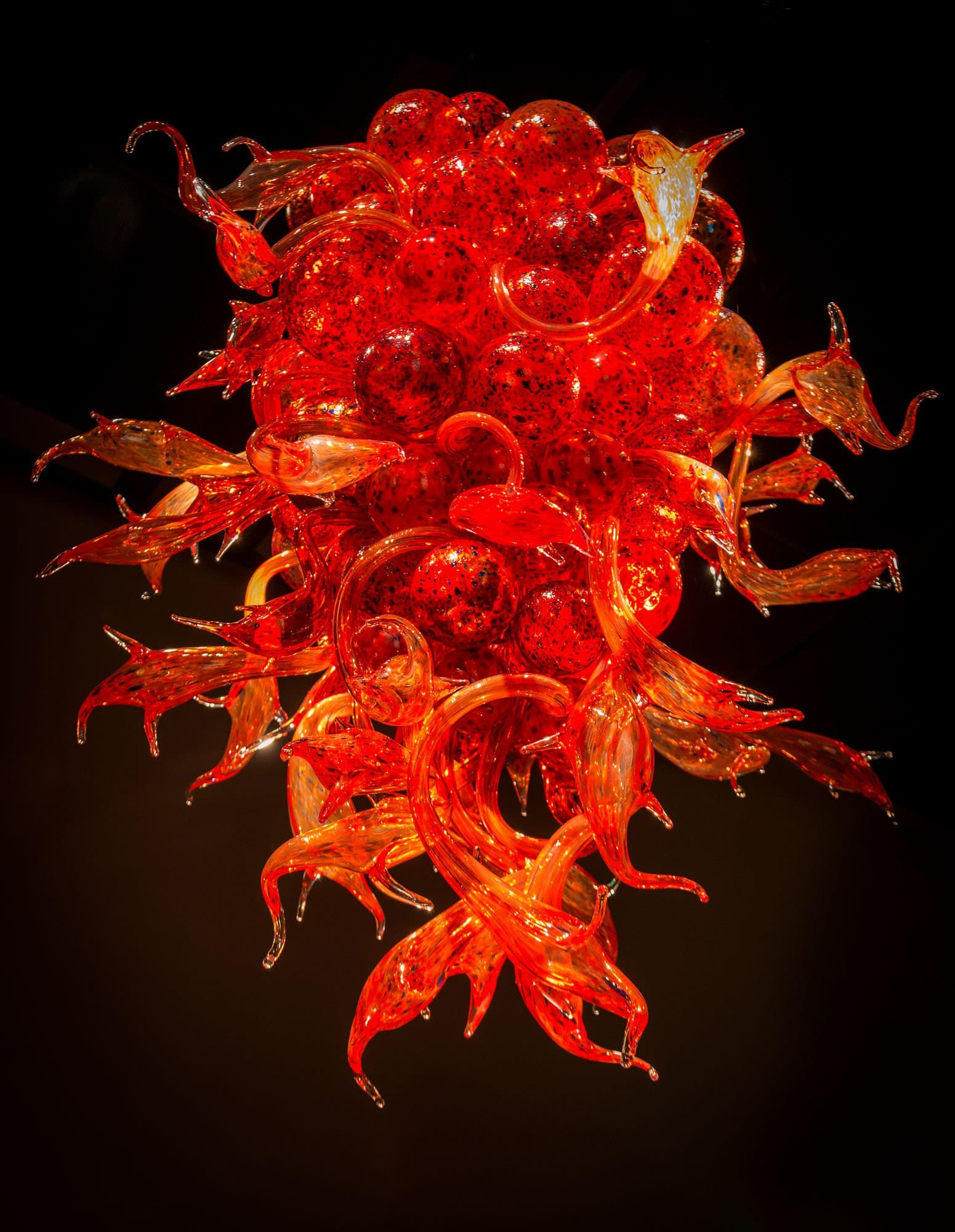 The wonderful art of dale chihuly mike heller photography dale chihuly glass art 2013 01 05 chandelier 2 arubaitofo Image collections