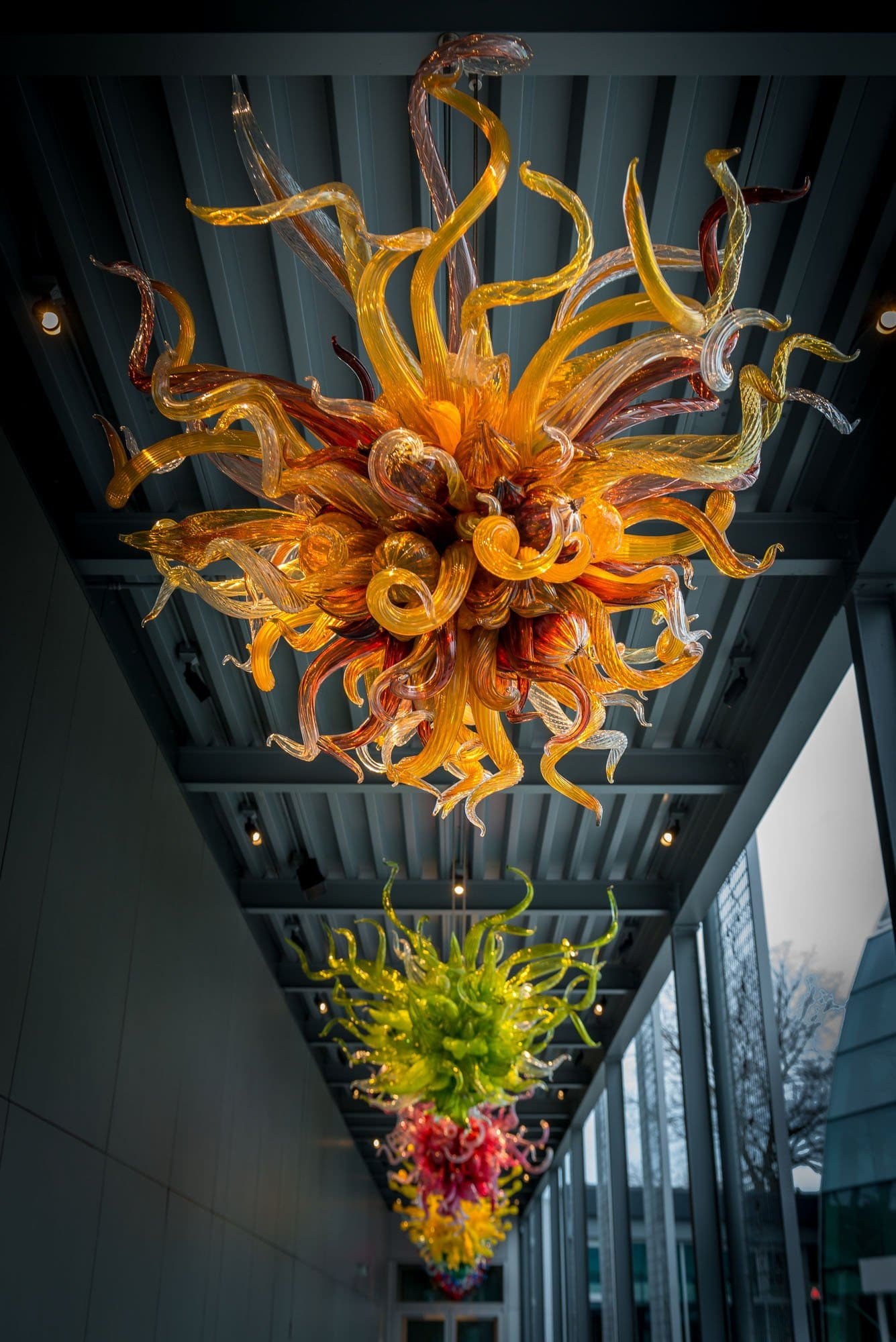 The wonderful art of dale chihuly mike heller photography dale chihuly glass art 2013 01 05 chandelier arubaitofo Image collections