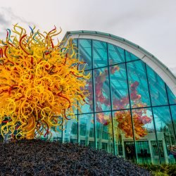 Dale Chihuly Glass Art : 2013-01-05 : Outside