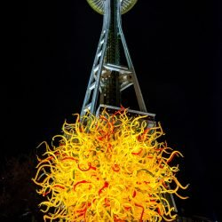 Dale Chihuly Glass Art : 2013-01-05 : Garden 2