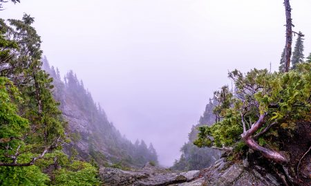 Saint Marks Summit Hike - Sept 2016 - D810 Panorama