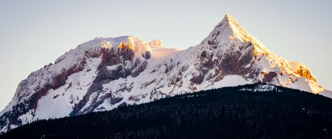 Squamish Bald Eagles : 2016-01-02 : Nikon D810 & Nikkor 200-500 : Mount Garibaldi Sunrise
