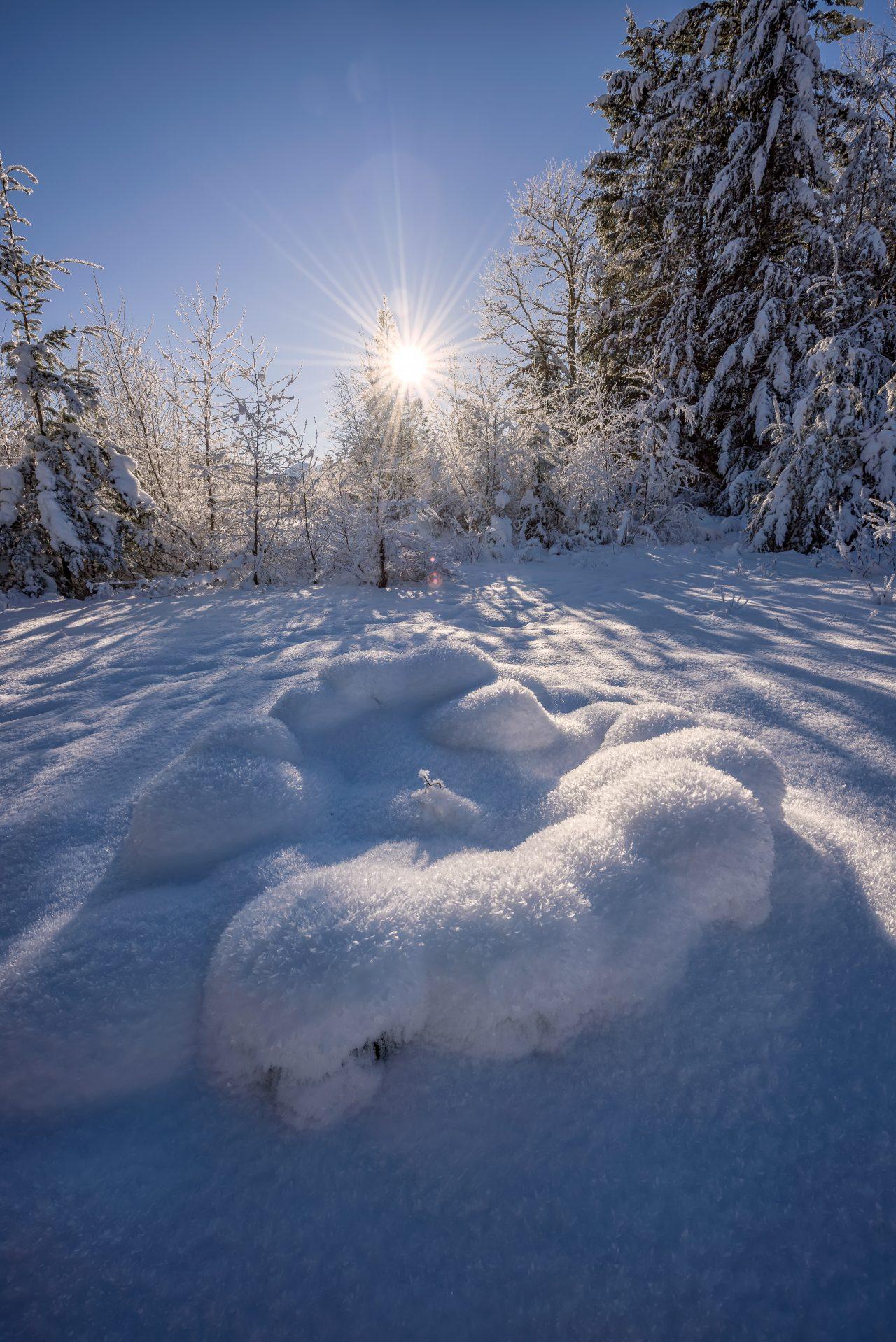 Squamish Bald Eagles : 2016-01-02 : Nikon D810 & Nikkor 14-24 : Frozen Landscape