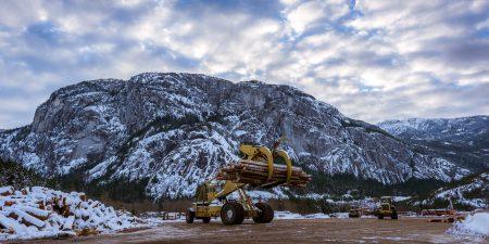 Squamish Bald Eagles : 2016-12-12 : Nikon D810 & Nikkor 14-24 : The Chief and Logging