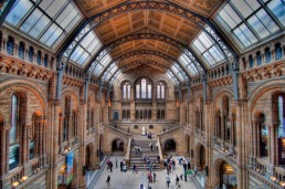 Museum of Natural History, London, UK