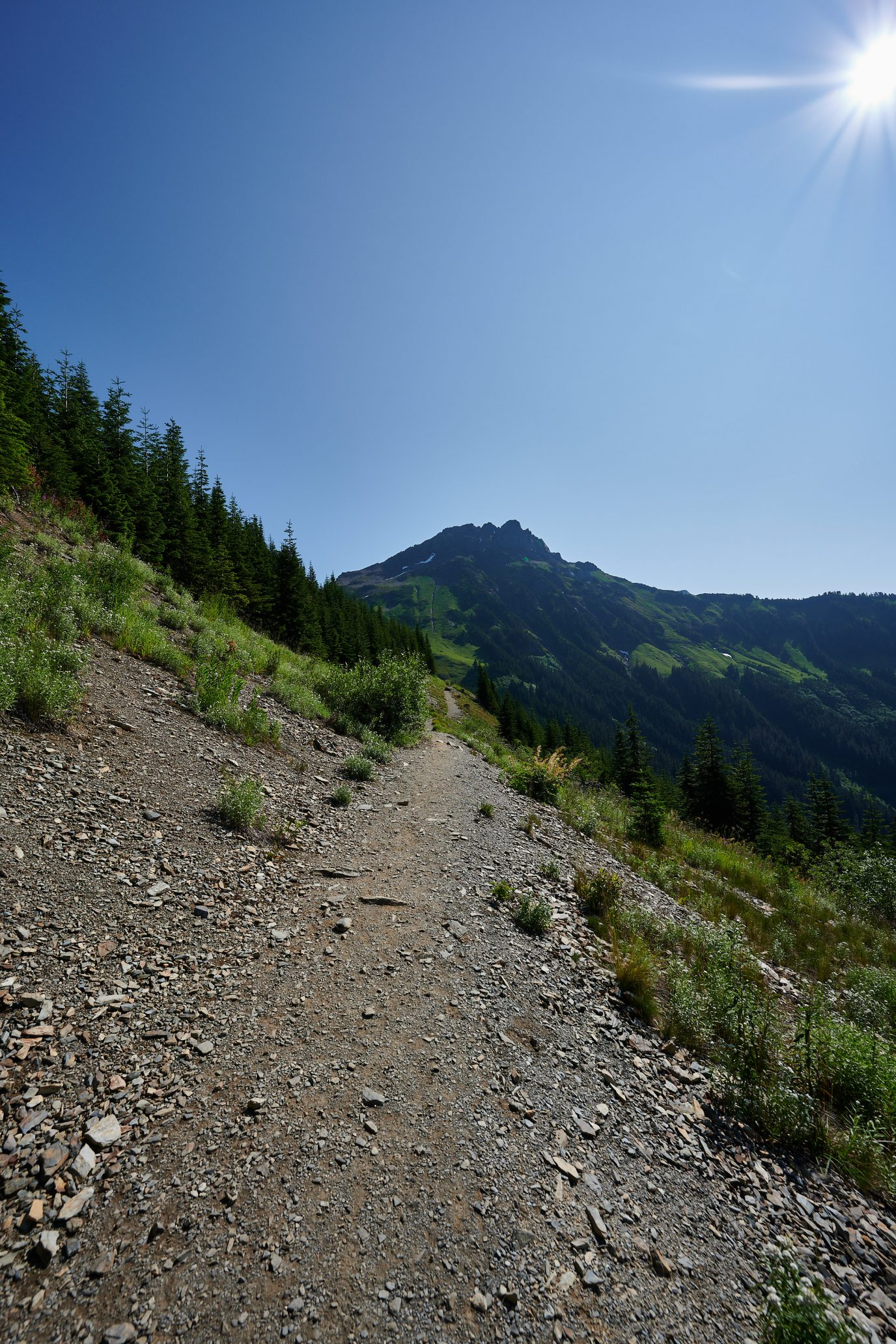 Cheam Peak Hike - Chilliwack, BC, Canada - Fraser Valley Hiking - Nikon Z7 and Nikkor 14-30 f/4 S Lens