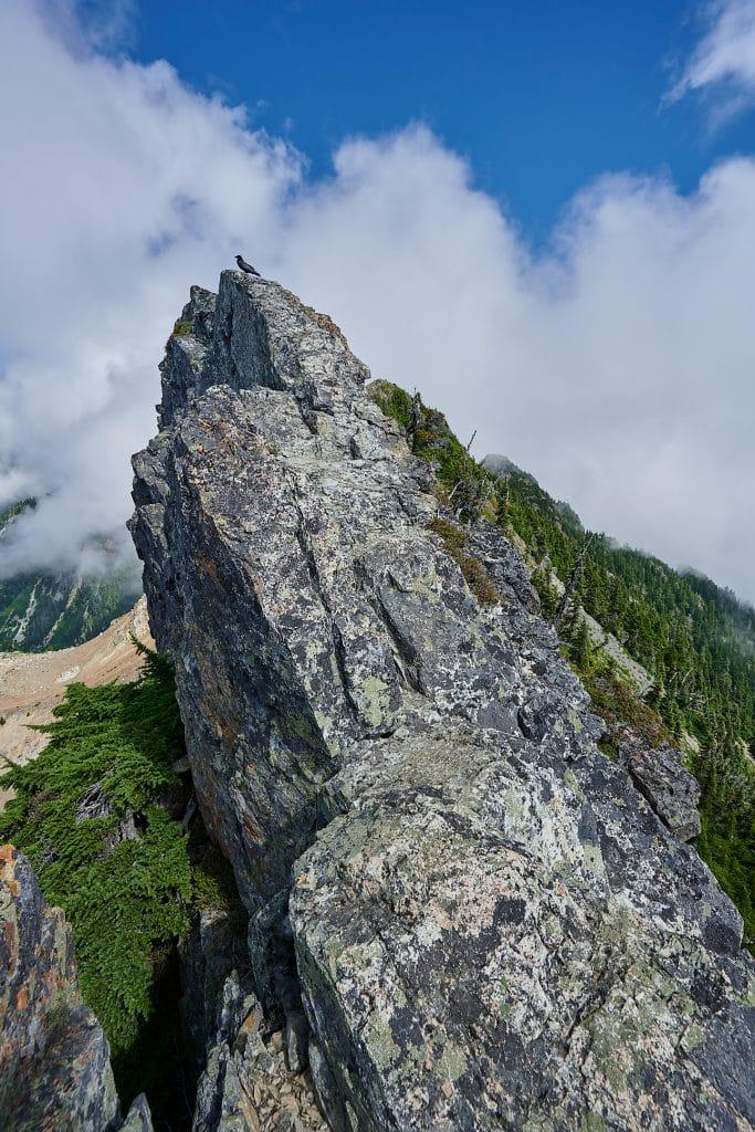 Hiking Brunswick Mountain 11